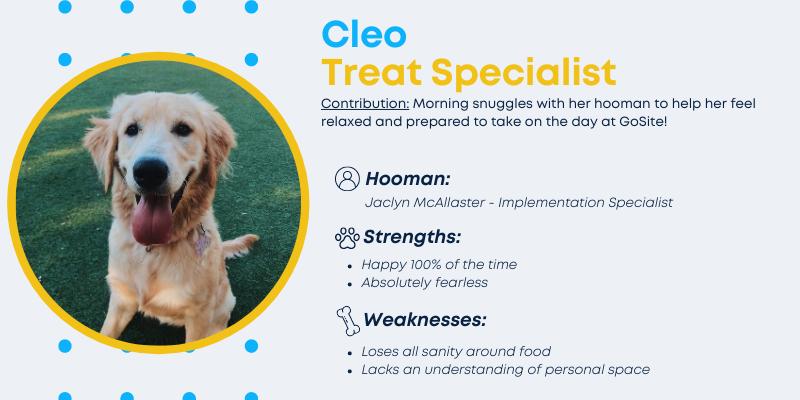 Cleo, Treat Specialist.
