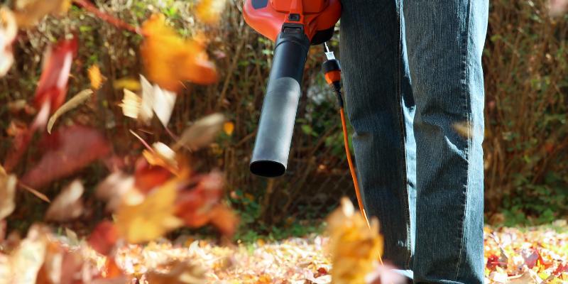 landscaper using a leaf blower.