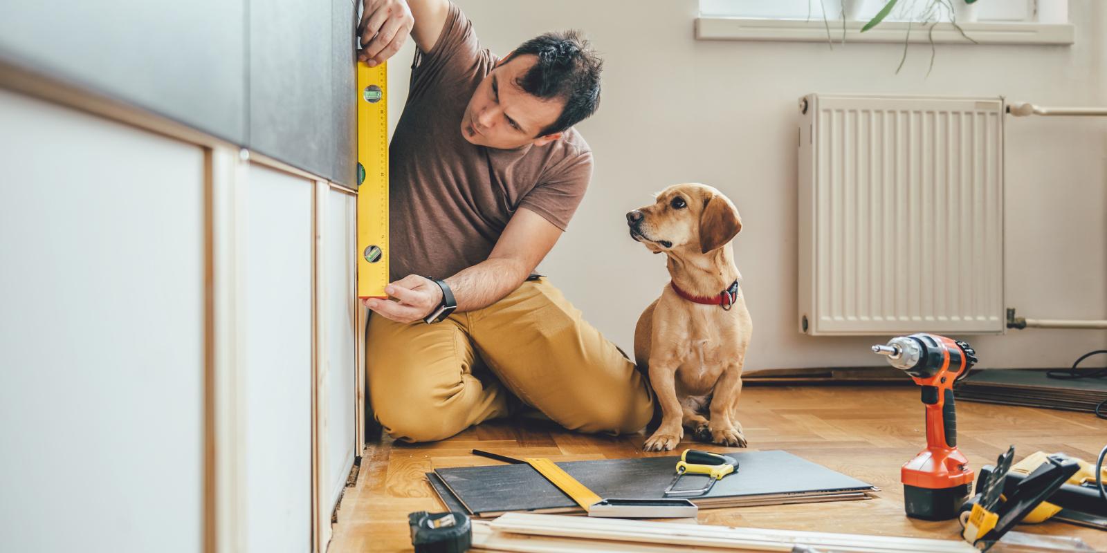 dog next to a man conducting home renovations