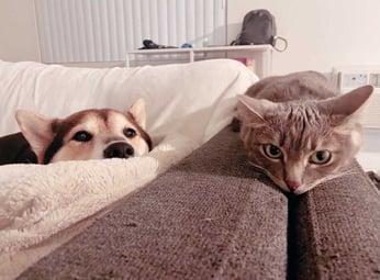 Yumi and Yaya