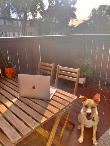 outdoor workspace #4