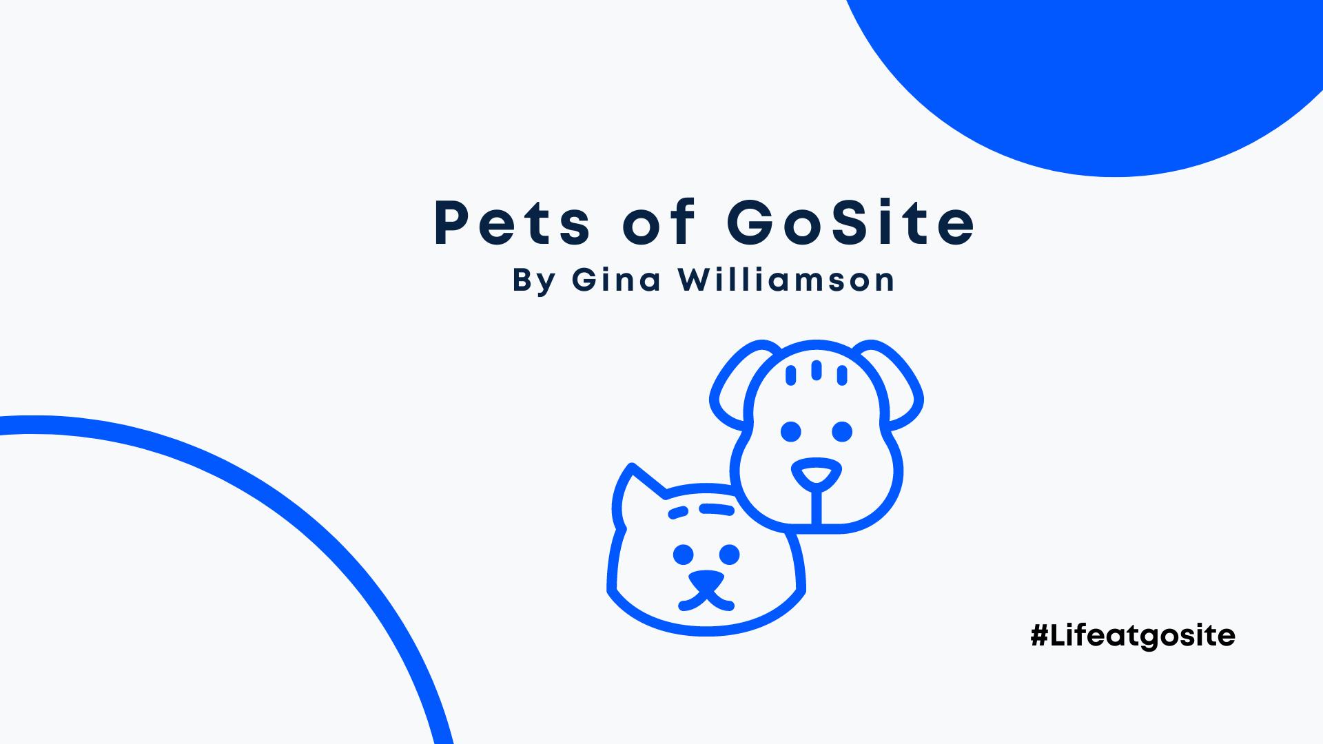 pets of gosite